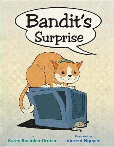 Bandit's Surprise: Rostoker-Gruber, Karen