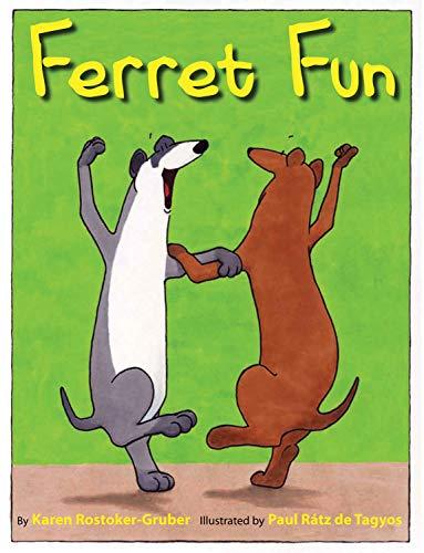 9780761458173: Ferret Fun