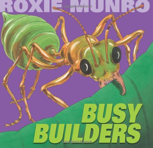 9780761461050: Busy Builders