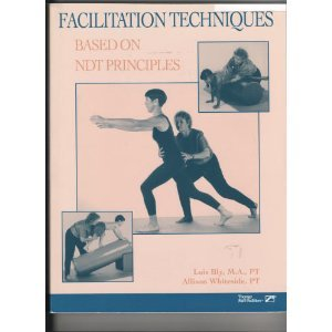 Facilitation Techniques Based on Ndt Principles: Bly, Lois, Whiteside,