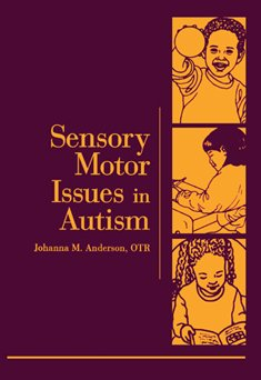 9780761671008: Sensory Motor Issues in Autism