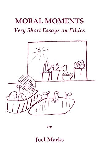 9780761818021: Moral Moments: Very Short Essays on Ethics
