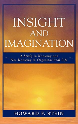 9780761837459: Insight and Imagination: A Study in Knowing and Not-Knowing in Organizational Life