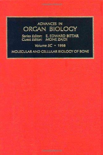 9780762303908: Molecular and Cellular Biology of Bone, Part A, Volume 5 (Advances in Organ Biology)