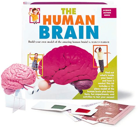 9780762404919: The Human Brain: Build Your Own Model of the Amazing Human Brain!