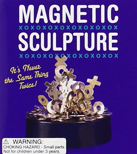 9780762413737: Magnetic Sculpture: It's Never The Same Thing Twice