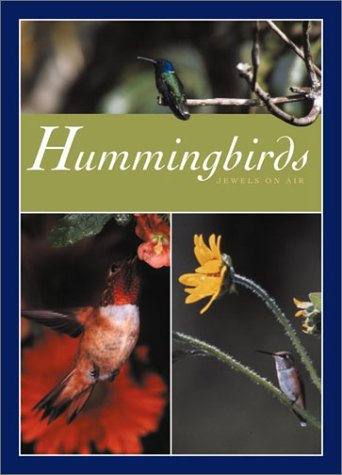 Hummingbirds: Votaw, Melanie