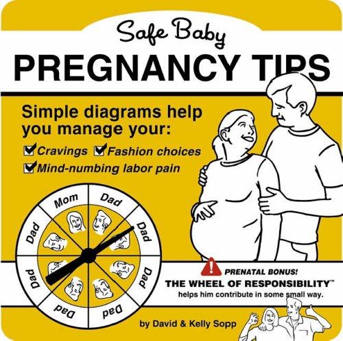 9780762428434: Safe Baby Pregnancy Tips