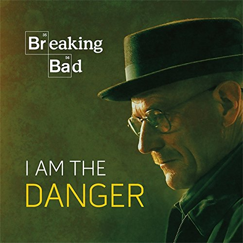 Breaking Bad: I Am the Danger