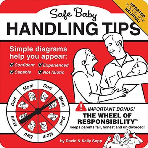 9780762456581: Safe Baby Handling Tips