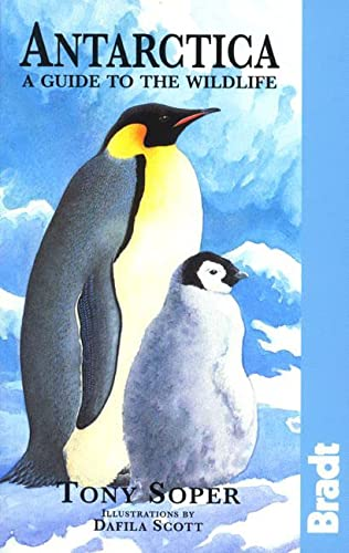 9780762700363: Antarctica: Guide to the Wildlife (Bradt Guides)
