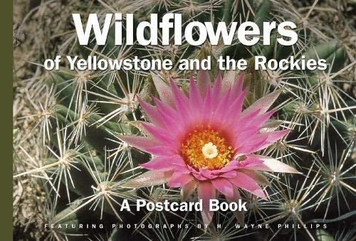Yellowstone National Park: A Postcard Book (Postcard Books) (0762729619) by David Klausmeyer