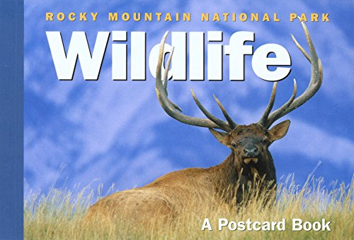 9780762736157: Rocky Mountain National Park Wildlife: A Postcard Book (Postcard Books)