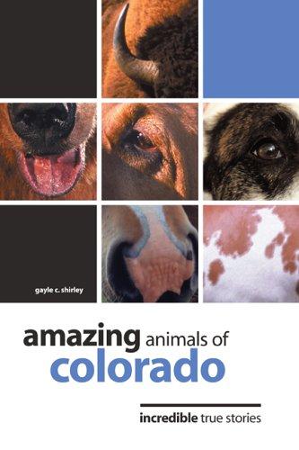 Amazing Animals of Colorado: Incredible True Stories: Gayle C. Shirley