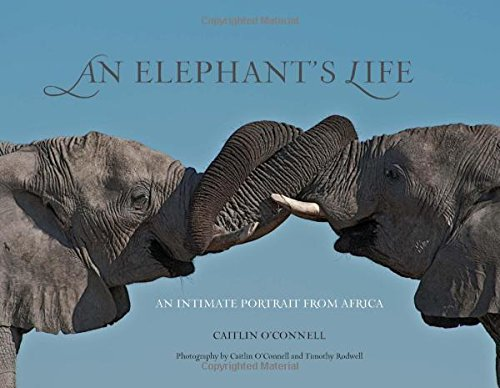 9780762763740: Elephant's Life: An Intimate Portrait from Africa