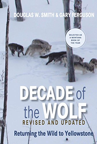 9780762779055: Decade of the Wolf, Revised and Updated: Returning The Wild To Yellowstone