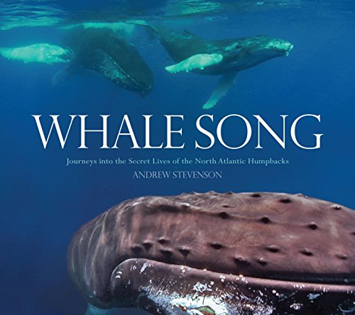 9780762779710: Whale Song: Journeys into the Secret Lives of the North Atlantic Humpbacks