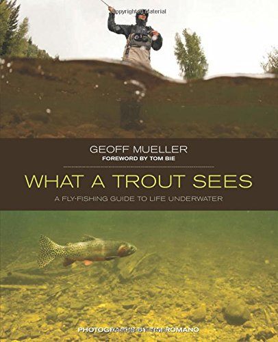 9780762779840: What a Trout Sees: A Fly-Fishing Guide To Life Underwater