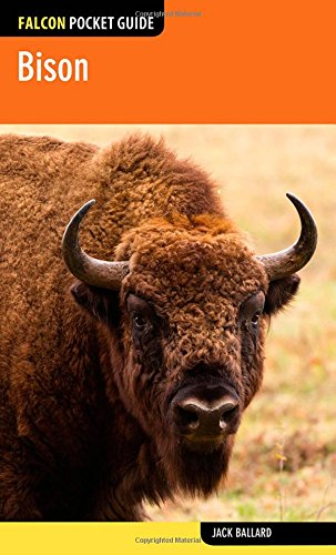 9780762781010: Bison (Falcon Pocket Guides)