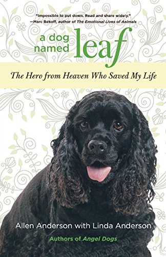9780762781652: Dog Named Leaf: The Hero From Heaven Who Saved My Life