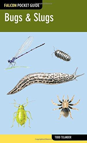 9780762784943: Bugs & Slugs (Falcon Pocket Guides)