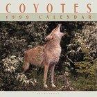 9780763111533: Cal 99 Coyotes