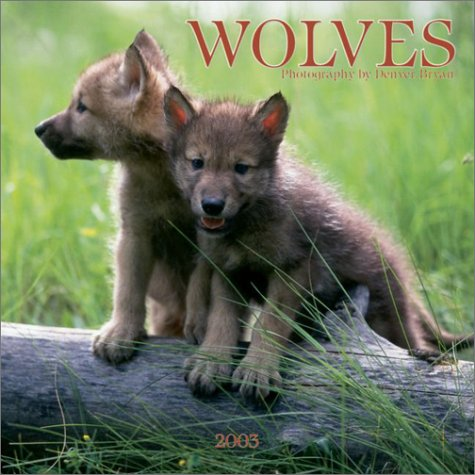 9780763149819: Wolves Mini Wall Calendar: 2003