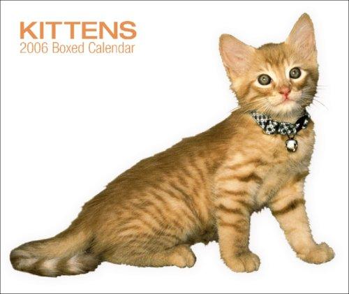9780763187903: Kittens 2006 Calendar
