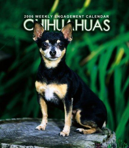 9780763189037: Chihuahuas Weekly 2006 Calendar