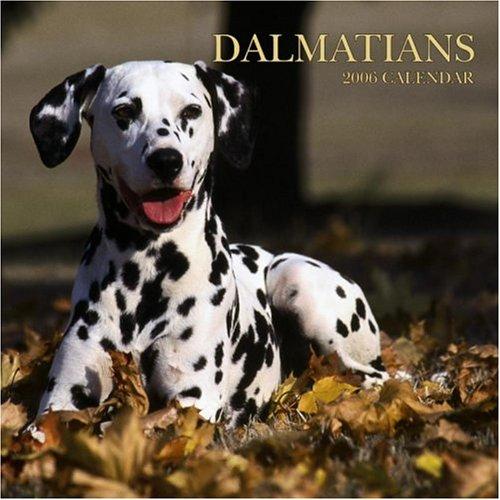 Dalmatians 2006 Calendar