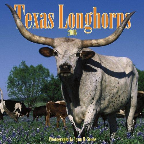 9780763195236: Texas Longhorns 2006 Calendar