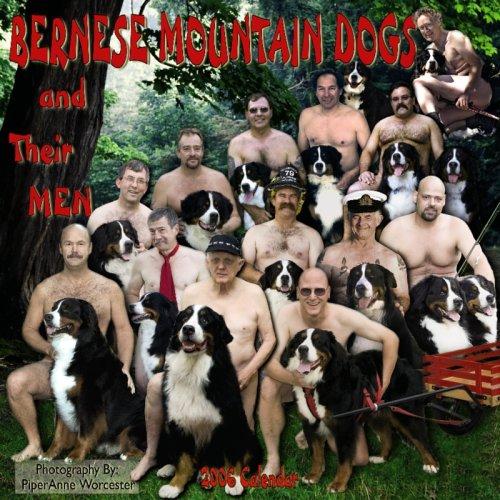 9780763196943: Bernese Mountain Dogs & Their Men 2006 Calendar