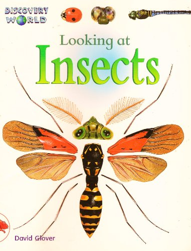 9780763523541: Looking at Insects (Discovery World)