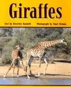 9780763572693: Giraffes (Rigby PM Benchmark Collection: Level 23)
