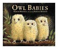 9780763609450: Owl Babies
