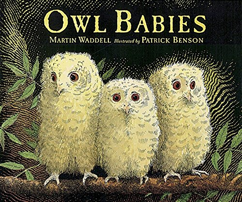 9780763612832: Owl Babies Big Book