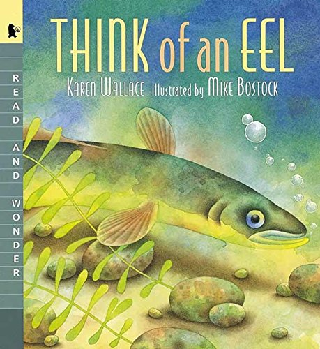 9780763615222: Think of an Eel: Read and Wonder (Read and Wonder (Paperback))