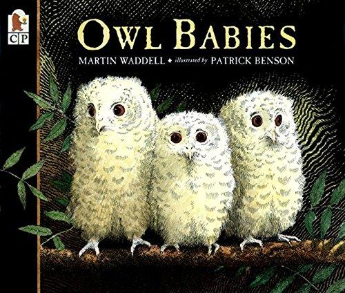 9780763617103: Owl Babies