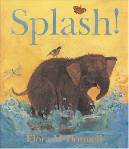9780763620356: Splash! (Board Book Reprints)
