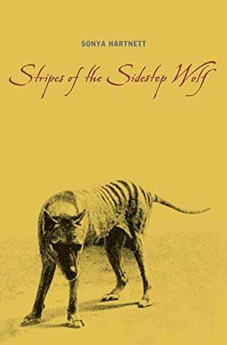 9780763626440: Stripes of the Sidestep Wolf