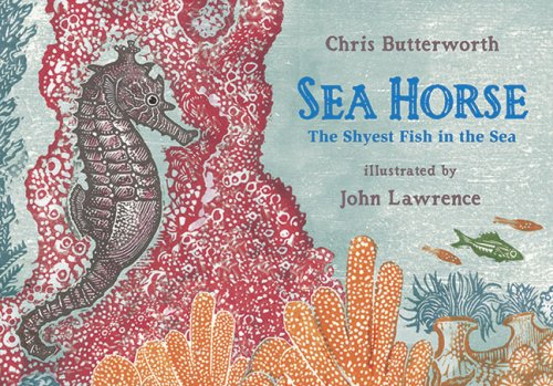 9780763629892: Sea Horse: The Shyest Fish in the Sea