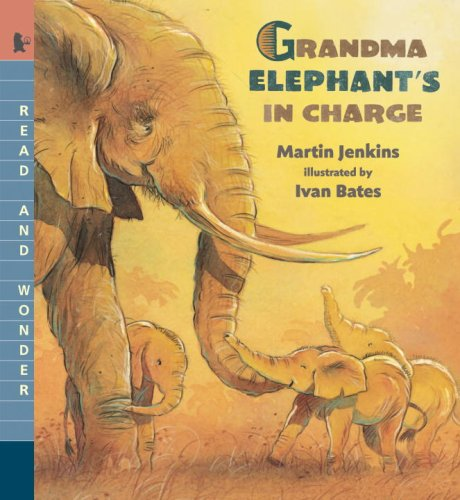 Grandma Elephant's in Charge: Read and Wonder: Martin Jenkins
