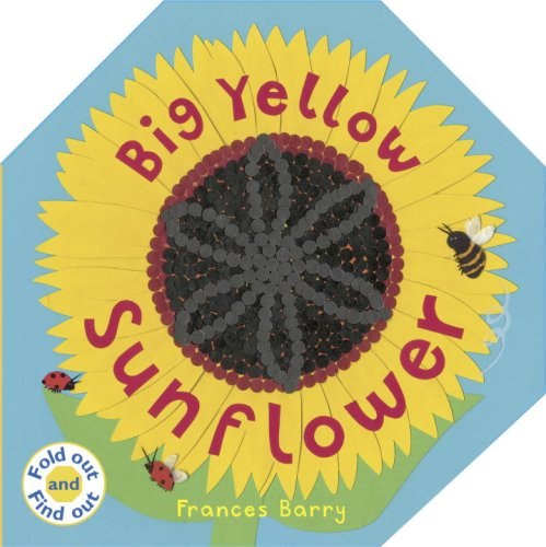 9780763637248: Big Yellow Sunflower (Fold Out and Find Out)