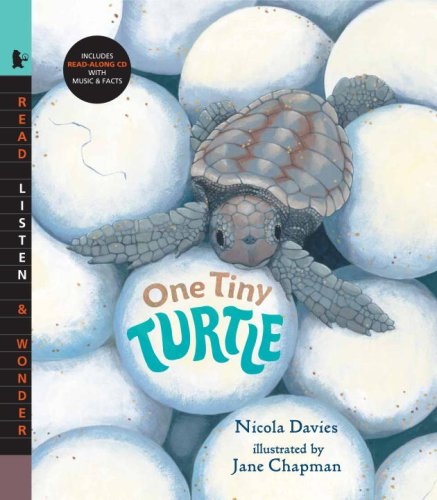 9780763638344: One Tiny Turtle with Audio: Read, Listen, & Wonder