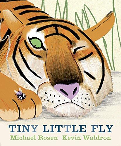 9780763646813: Tiny Little Fly