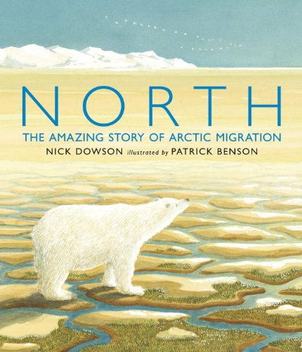 9780763652715: North: The Amazing Story of Arctic Migration
