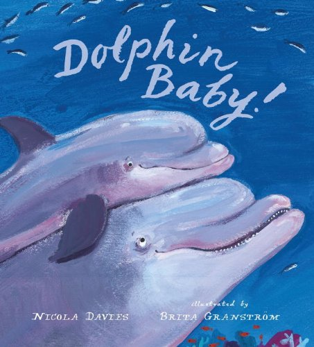 9780763655488: Dolphin Baby! (Junior Library Guild Selection)