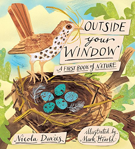 9780763655495: Outside Your Window: A First Book of Nature