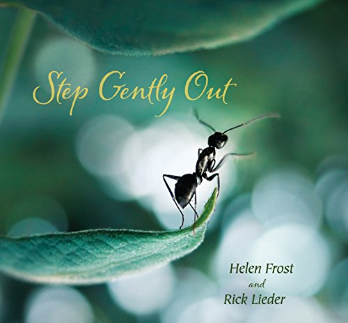 Step Gently Out (0763656011) by Frost, Helen