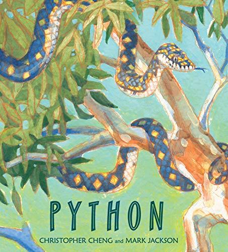 9780763663964: Python